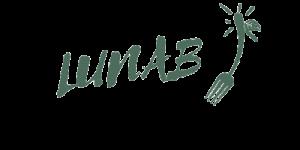 logo lunab
